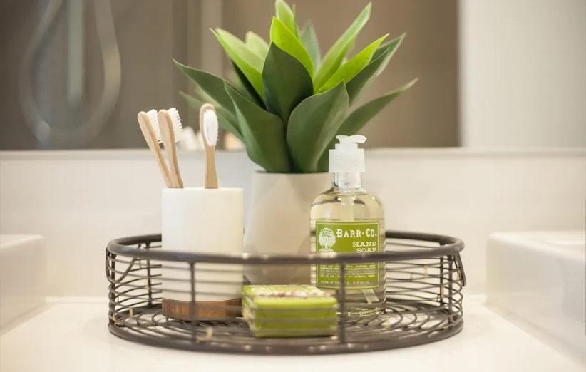 گیاهان مخصوص سرویس بهداشتی و حمام
